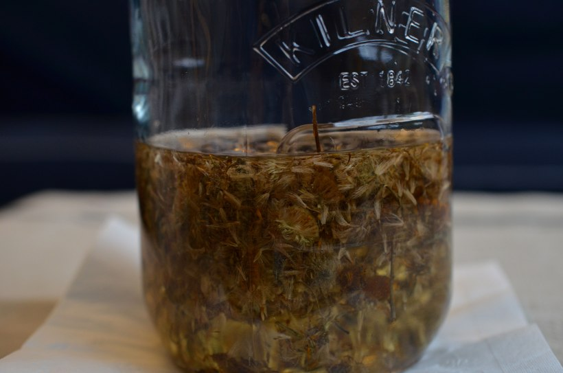 Dried arnica root infusing in almond oil